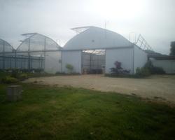 La ferme du Creuseret - Saint-Vit - Nos légumes et farines